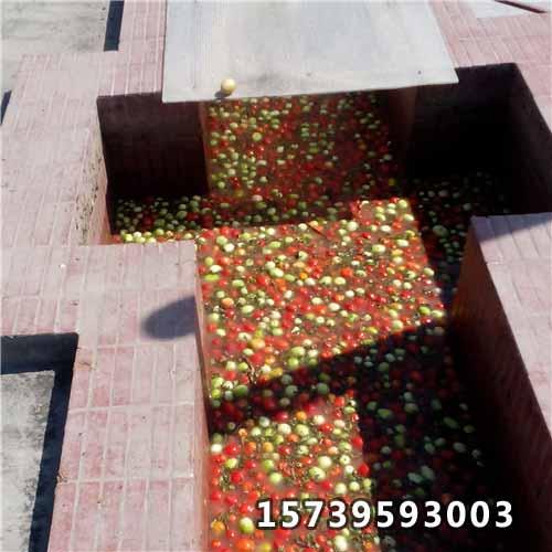 猎趣nba篮球直播番茄酱废水用聚nba直播猎趣直播